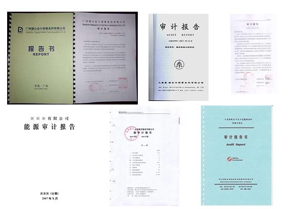年度审计报告翻译-公司企业财务报表翻译